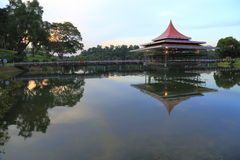 Sunset Reservoir 6. Singapore Macritchie Reservoir at sunset blue hour Royalty Free Stock Photo