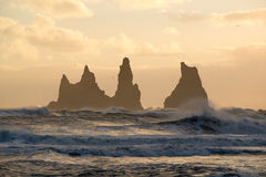 Sunset at Reynisdrangar cliffs on Black sand beach in Vik, Iceland Stock Images