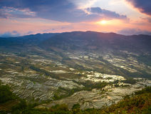 Sunset at rice terraces Stock Photography