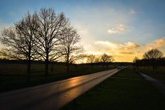 Sunset in Richmond Park Royalty Free Stock Photography