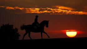 Sunset and rider (silhouette). The rider gallops on a decline Stock Image