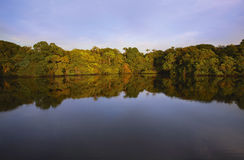 Sunset on the Rio Negro Royalty Free Stock Photography