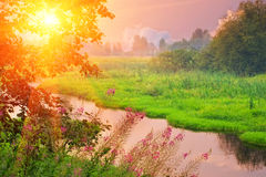 Sunset river Stock Image