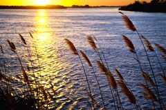Sunset on river Stock Images