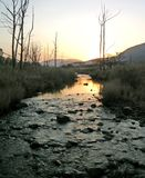 Sunset river Royalty Free Stock Photo