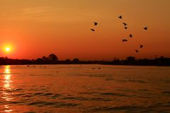 Sunset at the river. Bangkok Thailand Stock Images