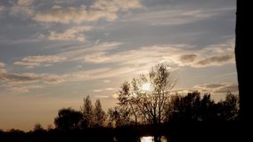 Sunset on the river bank near the tree stock footage