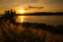 Sunset river color Yellow Royalty Free Stock Image
