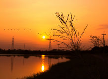 Sunset at the river Royalty Free Stock Image