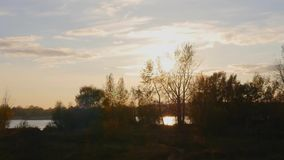 Sunset on the river. Sunset only just started for the trees stock video footage