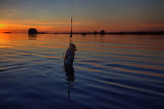 Sunset river perch fishing with the boat and a rod Stock Image
