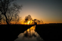Sunset in a river. With tree Stock Photography