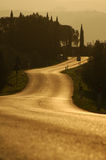 Sunset road. A chianti road at sunset royalty free stock images