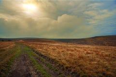 Sunset road. Carpatian mountains Ukraine sunset golden Royalty Free Stock Photos