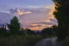 sunset road in the forest Eretria Euboea Greece stock images
