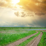 Sunset and road in green grass Stock Photography