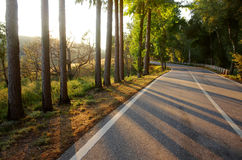Sunset Road Royalty Free Stock Images