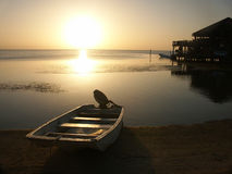 Sunset on Roatan Island Stock Images