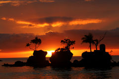 Sunset. Rock sea ocean nature clouds sky sun tree royalty free stock photo
