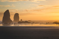 Sunset with Rock Stacks on the Coast Stock Photos