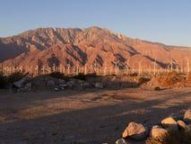 Sunset Rocks. Sunset Rock DOF desert Palm Springs royalty free stock image