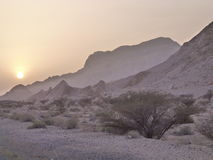 Sunset at rocky desert. Near Oman UAE border with monochromatic grey brown tonalities Stock Photos