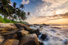Sunset on the rocky shore Stock Image