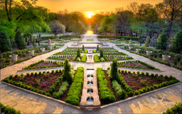 Sunset in the Rose Garden. Beautifully landscaped urban rose garden on a clear spring day in Texas Royalty Free Stock Photo