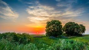 sunset rosji obrazy stock