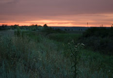 Sunset in the Rostov steppe stock image