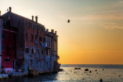 Sunset in Rovinj Stock Photos