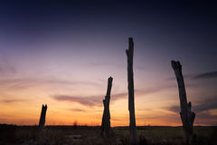 Sunset rural landscape Penrith NSW Australia Royalty Free Stock Photos