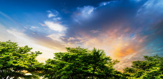 Sunset at rural scene. Soft and motion blur blue sky in sunset time at rural scene Stock Images