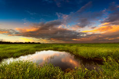 Sunset at rural scene. Soft and motion blur blue sky in sunset time with meadow at the rural scene Stock Photography