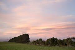 Sunset rural Tasmania Stock Image