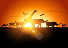 Sunset Safari. Wildlife silhouetted against a sunset - vector illustration vector illustration
