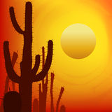 Sunset with Saguaro Cactus. Vector background. Royalty Free Stock Photography