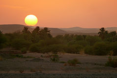 Sunset in the Sahara Desert. Stock Photos