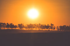 Sunset in the Sahara desert - Douz, Tunisia. Stock Image