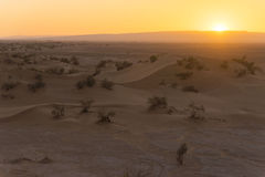 Sunset in the Sahara desert Stock Image