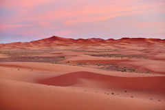 Sunset at Sahara Desert, Merzouga, Morocco Stock Images