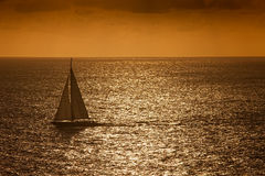 Sunset Sail on the Caribbean Sea Stock Photo