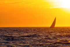 Sunset sailboat. Sailboat on horizon at sunset Stock Image