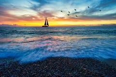Sunset Sailboat Sailing Ocean Stock Photos