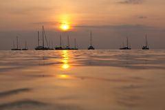 Sunset sailboats Royalty Free Stock Image