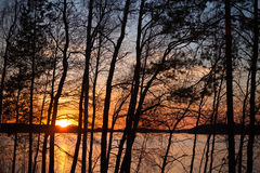 Sunset on Saimaa lake in Finland. With silhouettes of trees stock photo