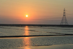 Sunset with Saltwater Crops Stock Image
