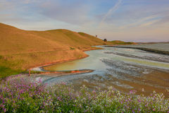 Sunset in San Francisco Bay from Coyote Hills Regional Park, Fremont, California Royalty Free Stock Photography