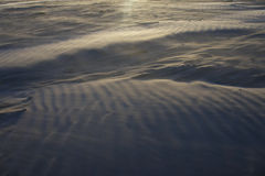 Sunset sand dune Royalty Free Stock Photo
