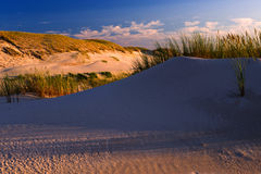 Sunset on sand dunes Royalty Free Stock Image